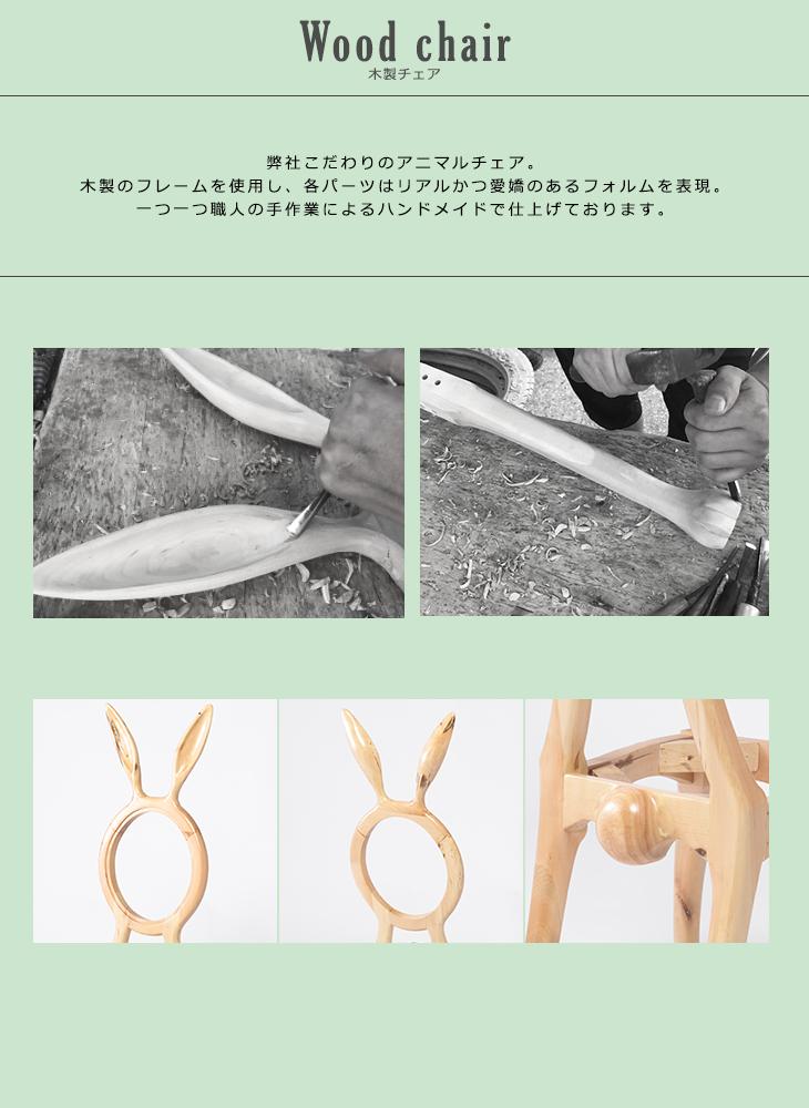 rabbit_dm
